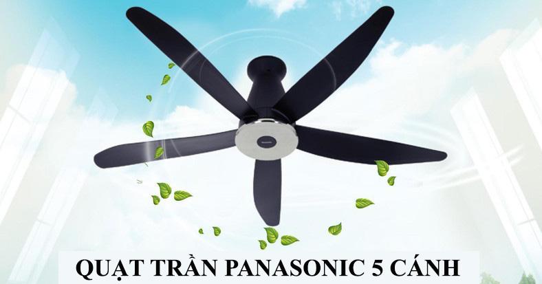TOP 6 mẫu Quạt trần Panasonic 5 cánh đẹp nhất