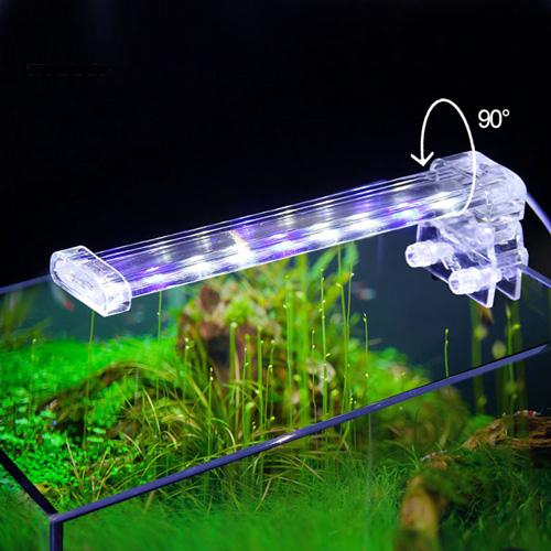 Đèn hồ cá