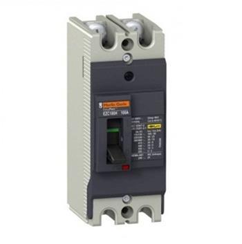Thiết bị đóng cắt EZC250 2P 100A type H,lcu=85ka 220/240 VAC EZC250H2250