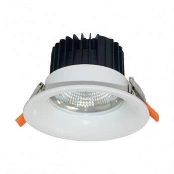 Đèn Downlight Chiếu Sâu Trần Cao - 30W DFA0305