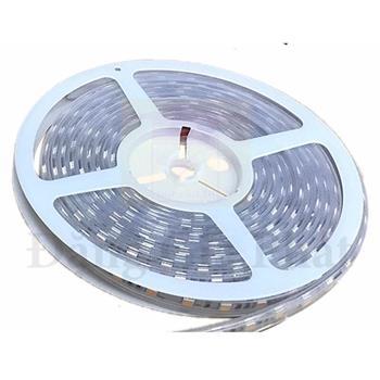 Đèn Led dây 5050 Paragon 14,4W RGB LED5050/RGB