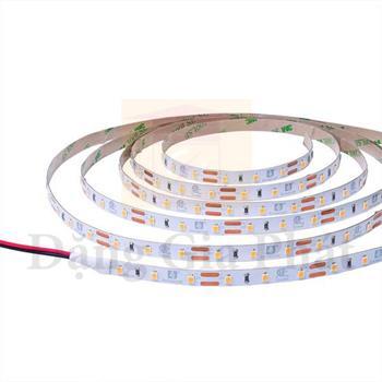 Đèn Led Dây Smart (8W/m) LSAC/SC