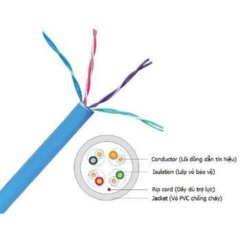 Dây cáp mạng CAT5 UTP 0.51 mm 4 Pair màu xanh/ trắng NC5E-F100