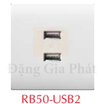 Ổ cắm usb đôi + ổ cắm đa năng RB50-USB2