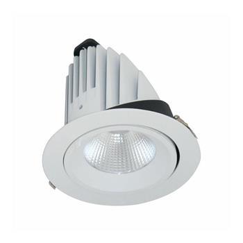 Đèn Led downlight chiếu sâu 40W BIB0401