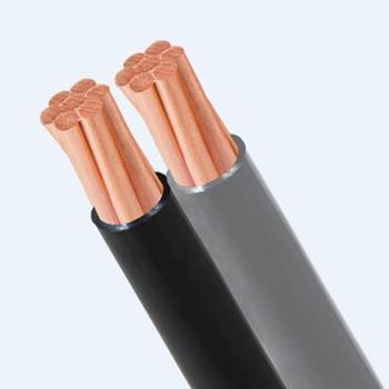 Cáp Duplex 0.6/1KV TLC Cable Du
