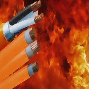 Cáp điện lực hạ thế chống cháy CV/FR-06/1kV-1 lõi CV/FR-X