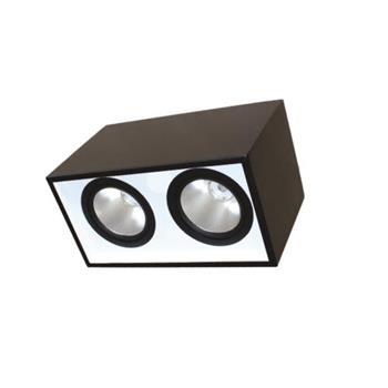 Đèn Led downlight gắn nổi chiếu sâu 2*10W DFB2101