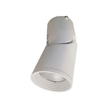 Đèn Led gắn nổi chiếu điểm trang trí 15W DIB0155