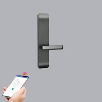 Khóa cửa Smart màu đen DL2-D/ZB DL2-D/ZB