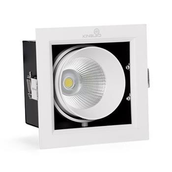 Đèn Led Hộp Âm Trần Rọi TOPAZ (CL Series) 1 bóng GL-1*10SS-V120