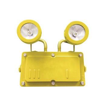 Đèn Khẩn Cấp Chống Nổ L280*W250*H130, Vỏ Màu Vàng KCN0082