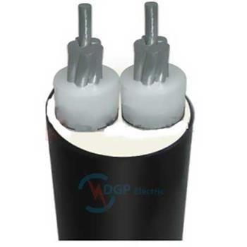 Cáp điện lực hạ thế AXV 2*xx - 0.6/1kV - TCVN5935 AXV-2*xx
